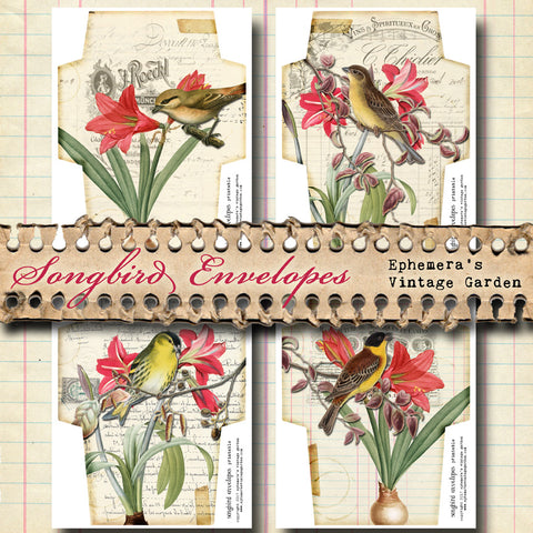 Songbird Envelopes