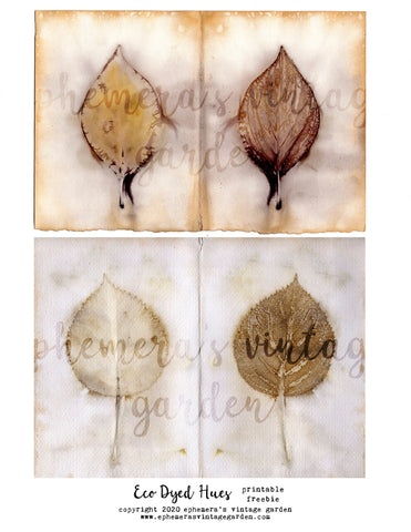 Eco Dyed Leaf Prints