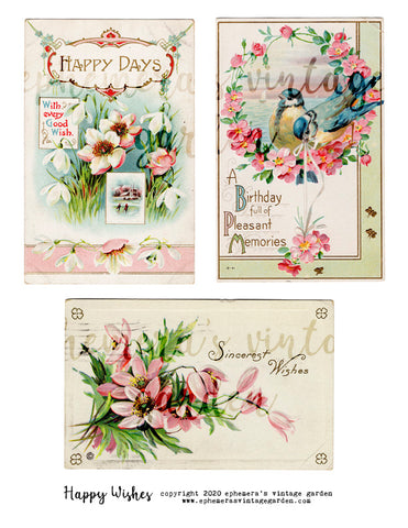 Happy Wishes - Pink Postcards