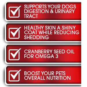 Image of K9 PRO Probiotics For Dogs - Tasty Soft Chewable Treats 7 Billion CFU - k9pro-store