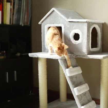 Cat Bedding & Towers