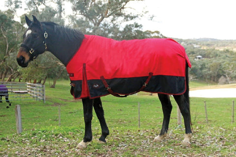 X-CALIBER 1200 200G DENIER WINTER RUG 6'3"