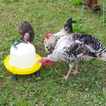 BAINBRIDGE POULTRY DRINKER WITH HANDLE 10LTR. | Southside Stockfeeds Kilmore