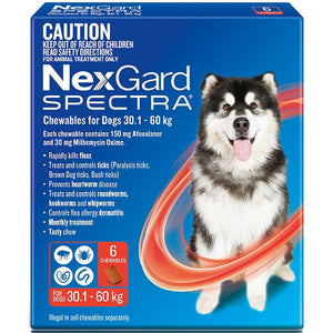 NEXGARD SPECTRA 30.1KG-60KG 6 PACK CHEWABLES FOR DOGS