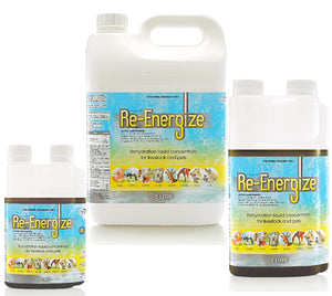 IAH RE-ENERGIZE 250ML