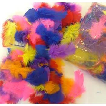 Fantasia Feather Assortment Bag - 100g