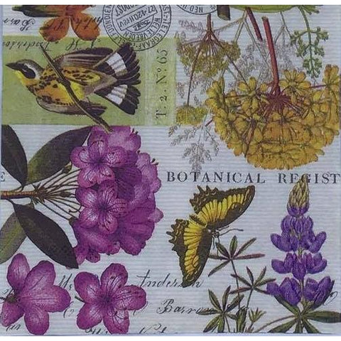 Decoupage Napkin - Botanical Register