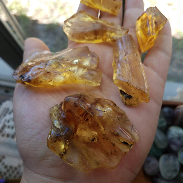 Baltic Amber Lot