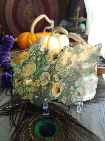 Rhyolite/Rainforest Jasper Slab