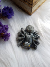 Load image into Gallery viewer, Soapstone Spider Carving