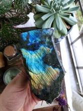 Load image into Gallery viewer, Semi Polished Labradorite