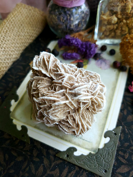 Large Desert Rose Cluster