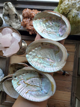 Load image into Gallery viewer, Abalone Shell Bowl