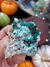 Load image into Gallery viewer, Dioptase Specimen