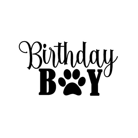 Image of Birthday Boy Iron-Ons Decal Design #1