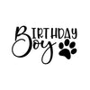 Birthday Boy Iron-Ons Decal Design #2