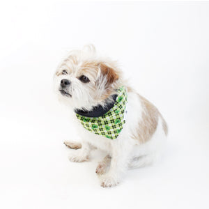 Bailey Reversible Bandana