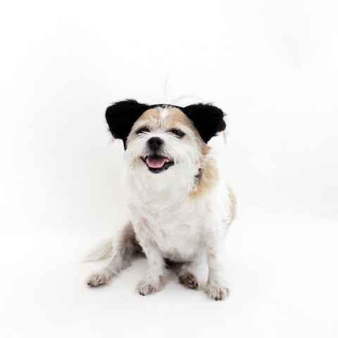 Image of Black Fuzzy Ears Headband