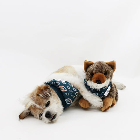 Image of Calvin Reversible Dog Bandanas matching with their owners | Hound and Friends