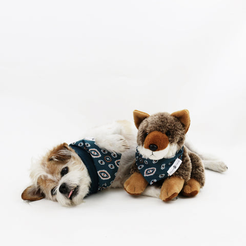 Calvin Reversible Dog Bandanas matching with their owners | Hound and Friends