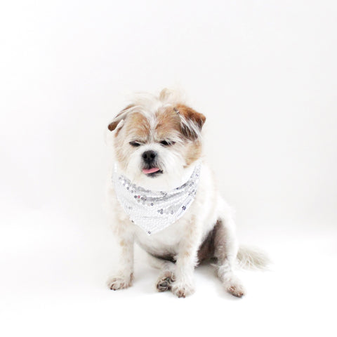 Image of Cary Sequins Reversible Bandana