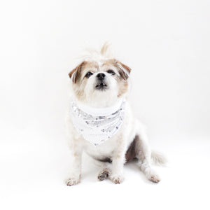 Cary Sequins Reversible Bandana