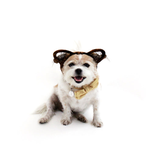 Image of Cat Ears Headband