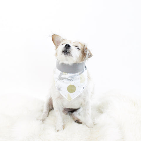 Image of Chaunsey Reversible Holiday Dog Bandanas | Hound and Friends