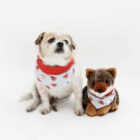 Cubby Reversible Dog Bandana to match with their owners at Hound and Friends
