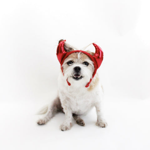 Image of Red Devil Headband