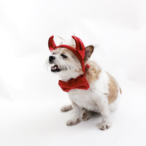 Red Devil Headband