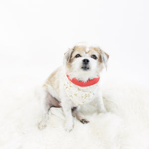 Edgar Reversible Tie-on Bandana | Dogs Bandanas and Accessories | Hound and Friends