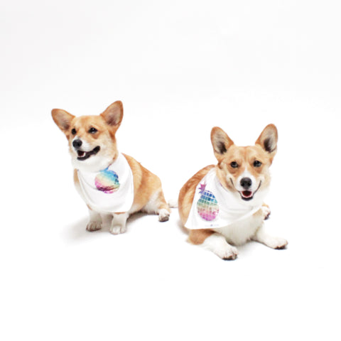 Image of Iggy Reversible Tie on Dog Pineapple Bandanas | Hound and Friends