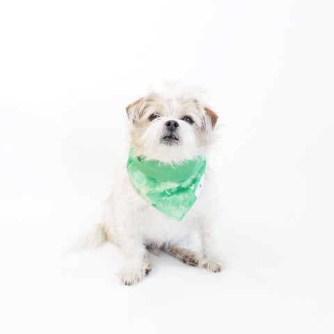 Image of Jade Reversible Bandana