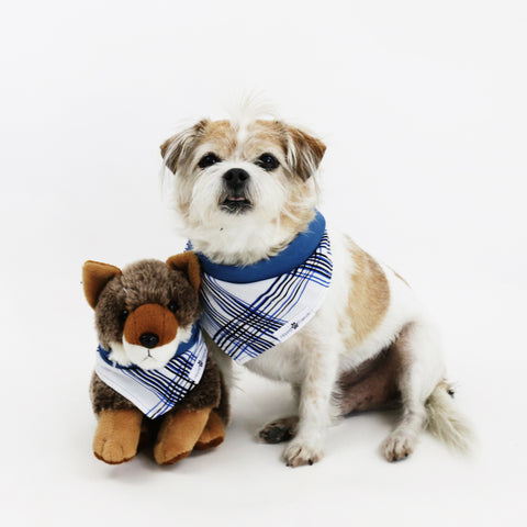 Image of Larry Blue Stripes Reversible Dog Bandana matching with owner | Hound and Friends