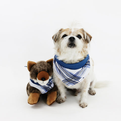 Larry Blue Stripes Reversible Dog Bandana matching with owner | Hound and Friends