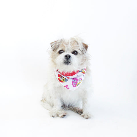 Holiday Dogs and Pets Bandanas and Accessories | Hound and Friends