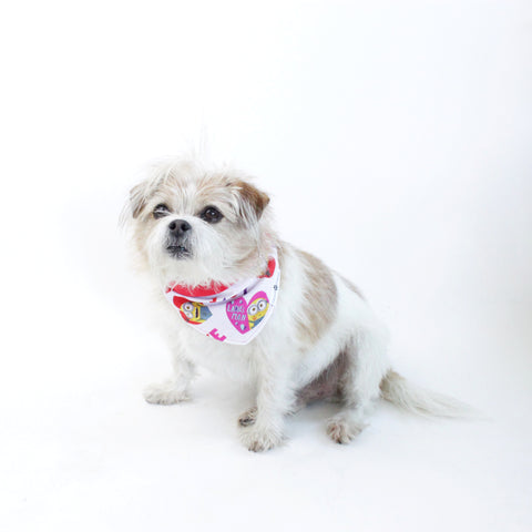 Image of Leika Reversible Bandana