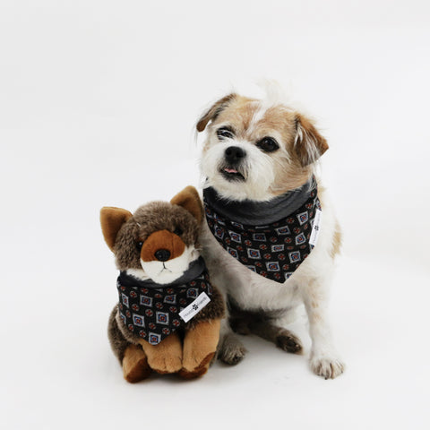 Lenny Reversible Dog Bandana to match with babies and people | Hound and Friends