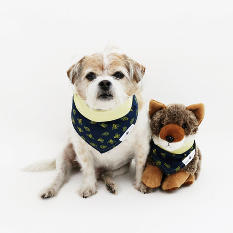 Image of Mac Reversible Dog Bandanas to match with owners at Hound and Friends