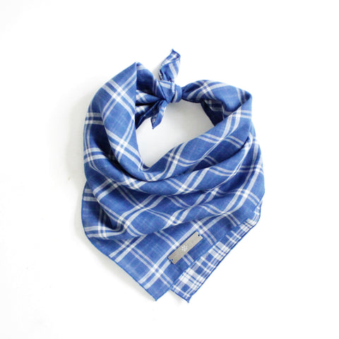 Image of Marvin Reversible White and Blue Plaids Bandana for Matching Dog Bandanas and Accessories | Hound and Friends