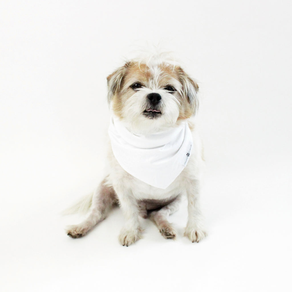 Peek-a-Boo! Reversible tie-on Bandana