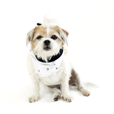 Image of Peter Reversible Bandana