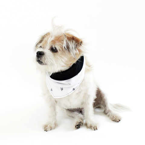 Peter Crane Reversible Dog Matching Bandanas and Accessories | Hound and Friends