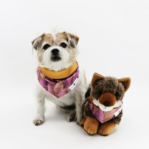 Image of Pokey Purple Reversible Dog Bandana matching with their owners | Hound and Friends
