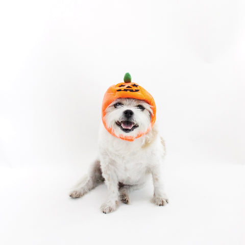 Image of Pumpkin Hat Head-wear