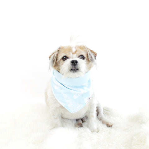 Image of Robbin Reversible Tie On Dog Bandana | Hound and Friends