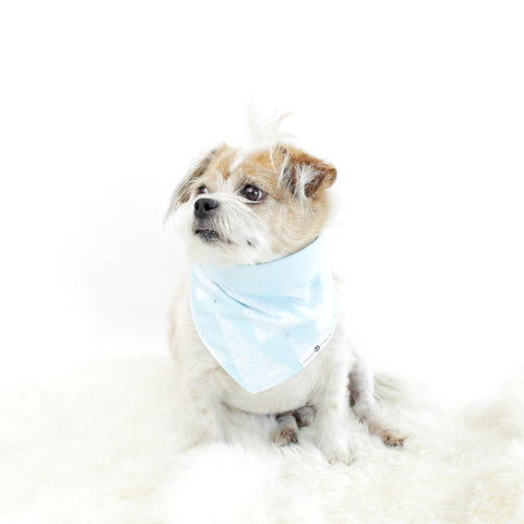 Image of Robbin Reversible Bandana