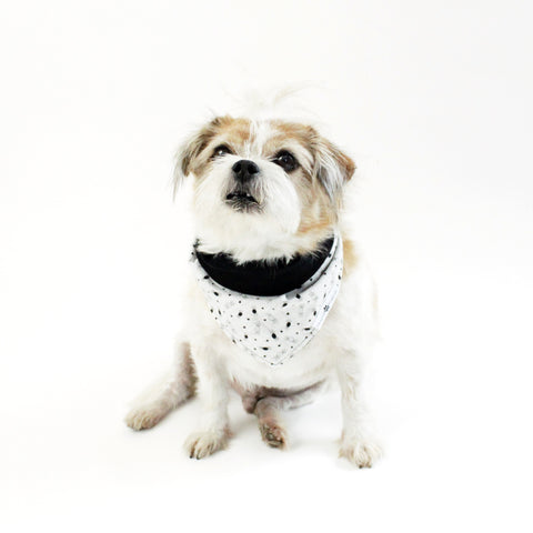 Image of Smiley Spiders Reversible tie-on Bandana