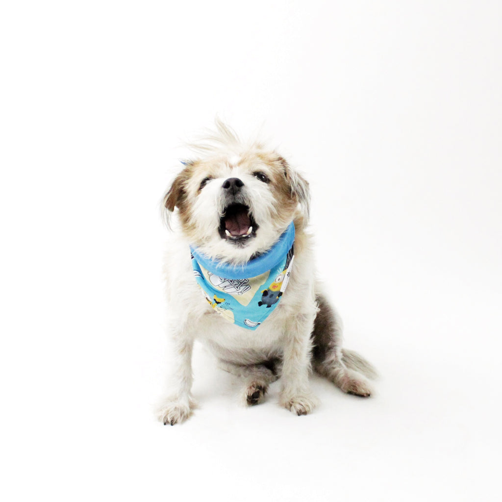 Smily Reversible Bandana